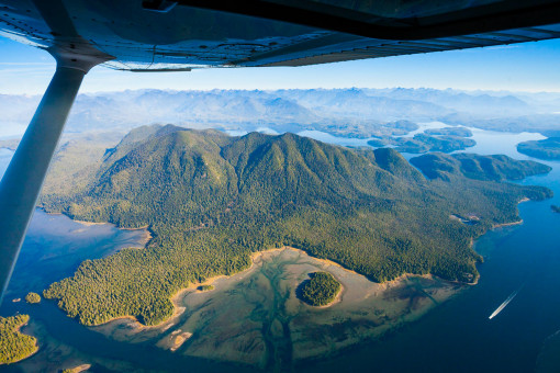 Meares Island from above