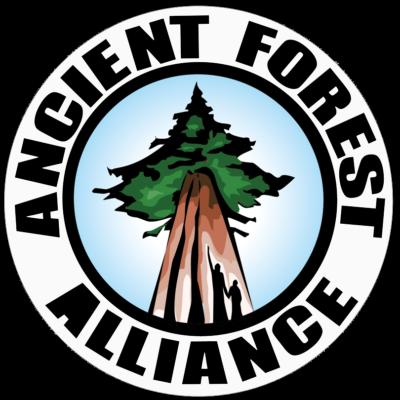 AFA Circle Logo Sticker
