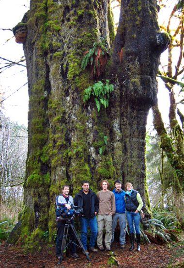 The Al Jazeera film crew and AFA activists TJ Watt and Ken Wu visit Canada's largest spruce
