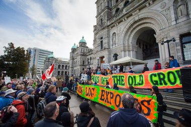 Environmentalists rally with forestry workers at a rally at the provincial legislature organized by the Ancient Forest Alliance (AFA) and the Private and Public Workers of Canada (PPWC) before the 2013 provincial election.