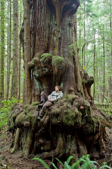 AFA Photographer TJ Watt relaxes in a giant redcedar the day he and a friend discovered the now endangered Avatar Grove.