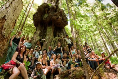 "A large group of hikers crowd around the massive redcedar dubbed ""Canada's Gnarliest Tree"" during an Ancient Forest Alliance led public hike to the Avatar Grove in summer 2010."