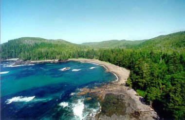 Waterfront property with old-growth forest for sale in BC's Cape Scott provincial park.