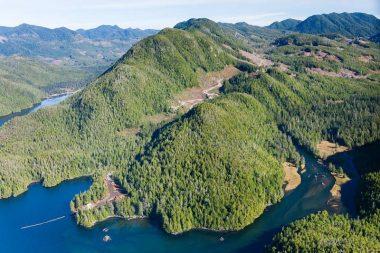 Aerial photo of East Creek logging in 2015